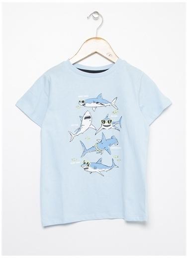 Limon Company Limon Mavi Bisiklet Yaka Köpek Balığı Baskılı Erkek Çocuk T-Shirt Mavi